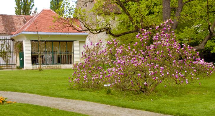 Schlosspark Mühlbach am Manhartsberg