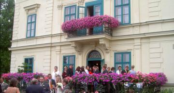 Heurigen Restaurant Schotten