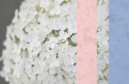Farbideen für deine Hochzeit 2016 <br>Pantone Weddingcolors