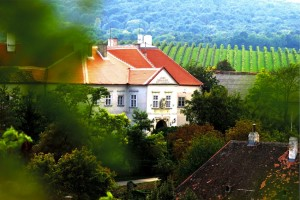 Schloss-Außen_klein