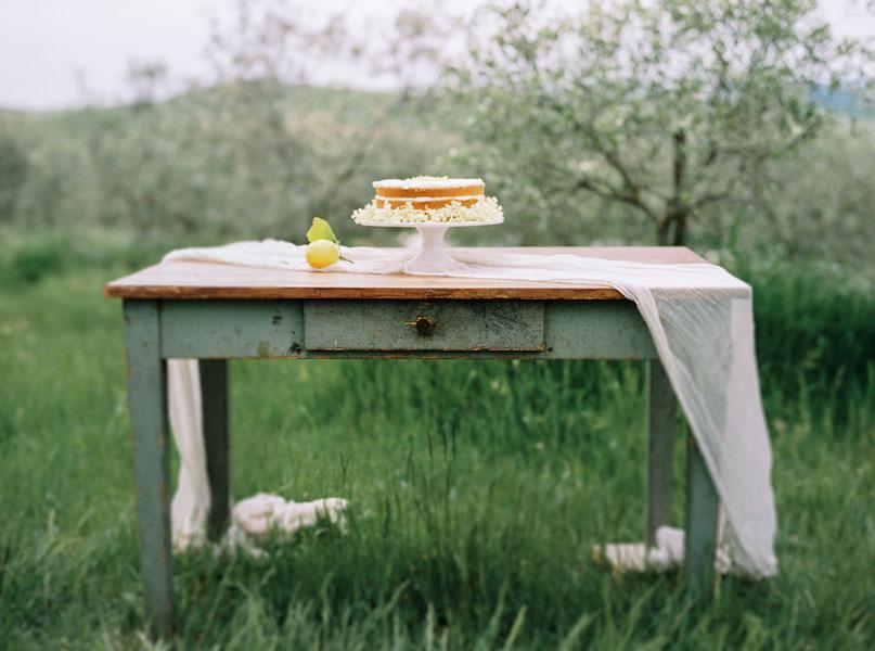 SILVIA FISCHER. echte kuchenliebe