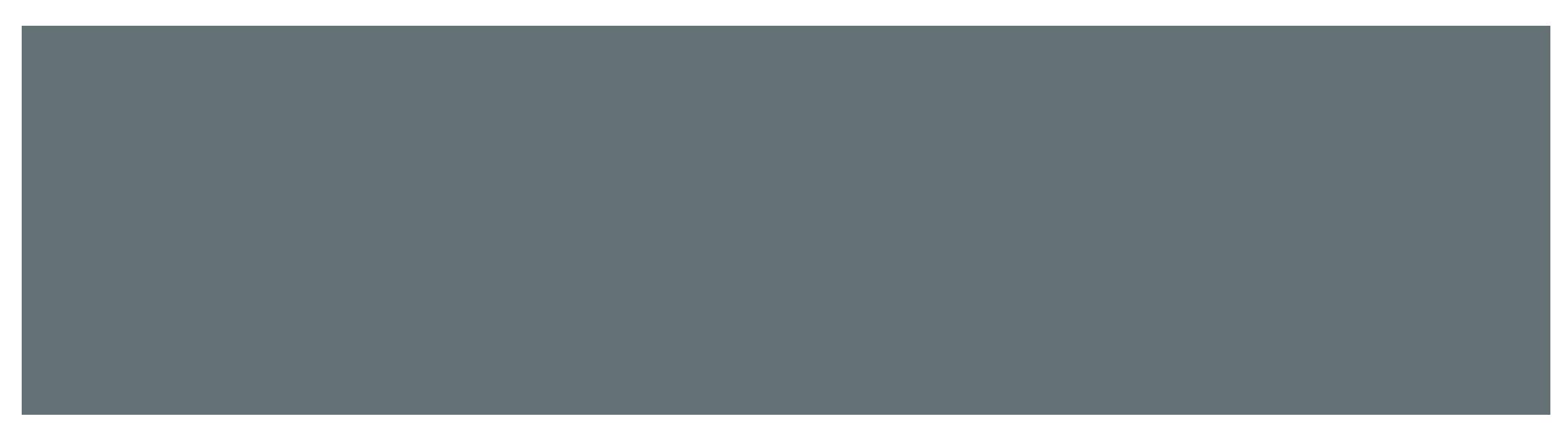Peter_Michalski_Logo_Farbe_1