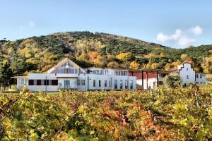 Herbstzeit am Weingut Schlossbergkl