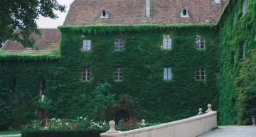schloss-poysbrunn