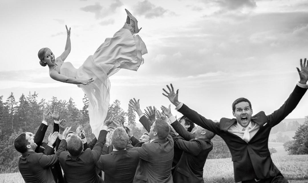 Turteltauben – Hochzeit & Feste