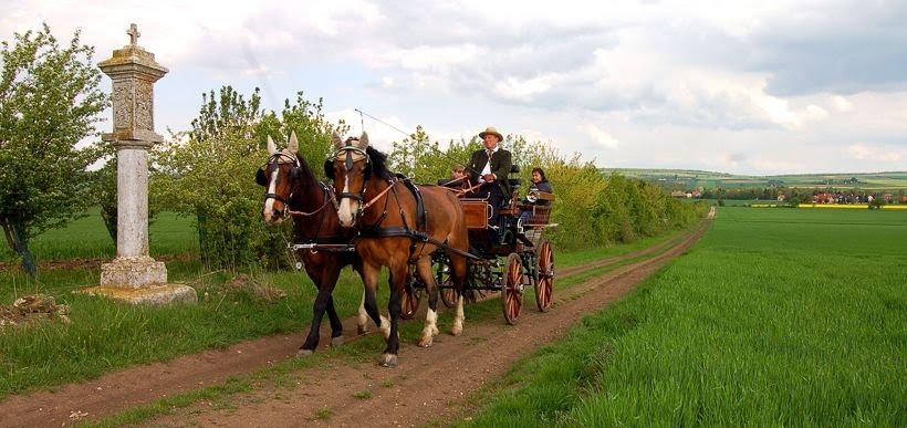 Weinviertler Kutschenfahrbetrieb