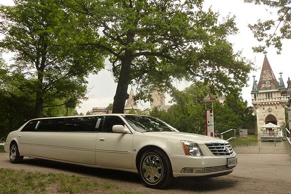 Classic Chaffeur Limousine