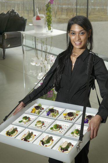 Oesterreich / Burgenland / Jois / Weingut Hillinger / Catering Kultur