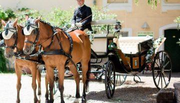Pferdehof Jagamühle – Hochzeitskutschen