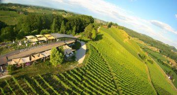 Weinmanufaktur & Hochzeitslocation Schilhan