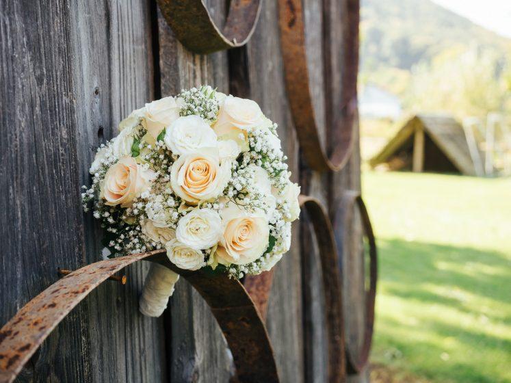 Hochzeit in Thernberg (20 von 31)