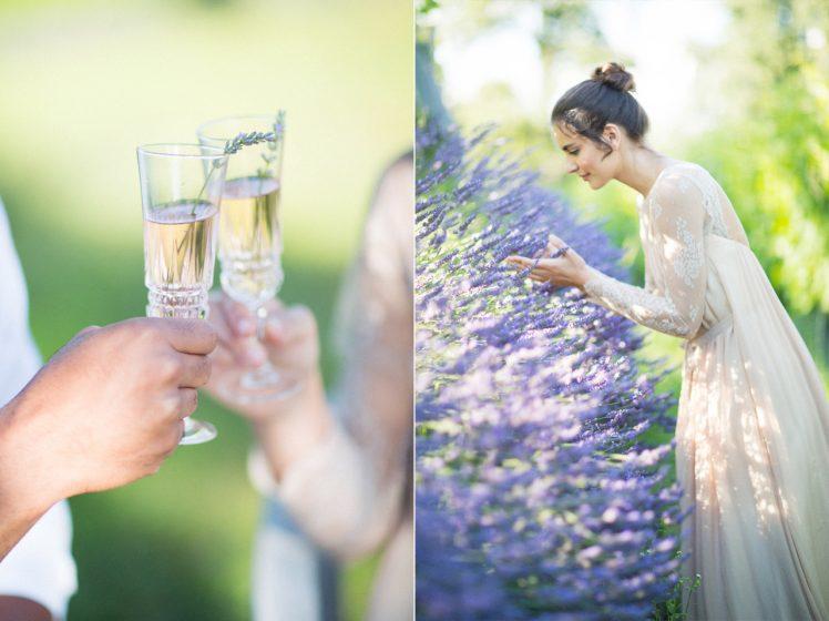 14_Lavender_(2)