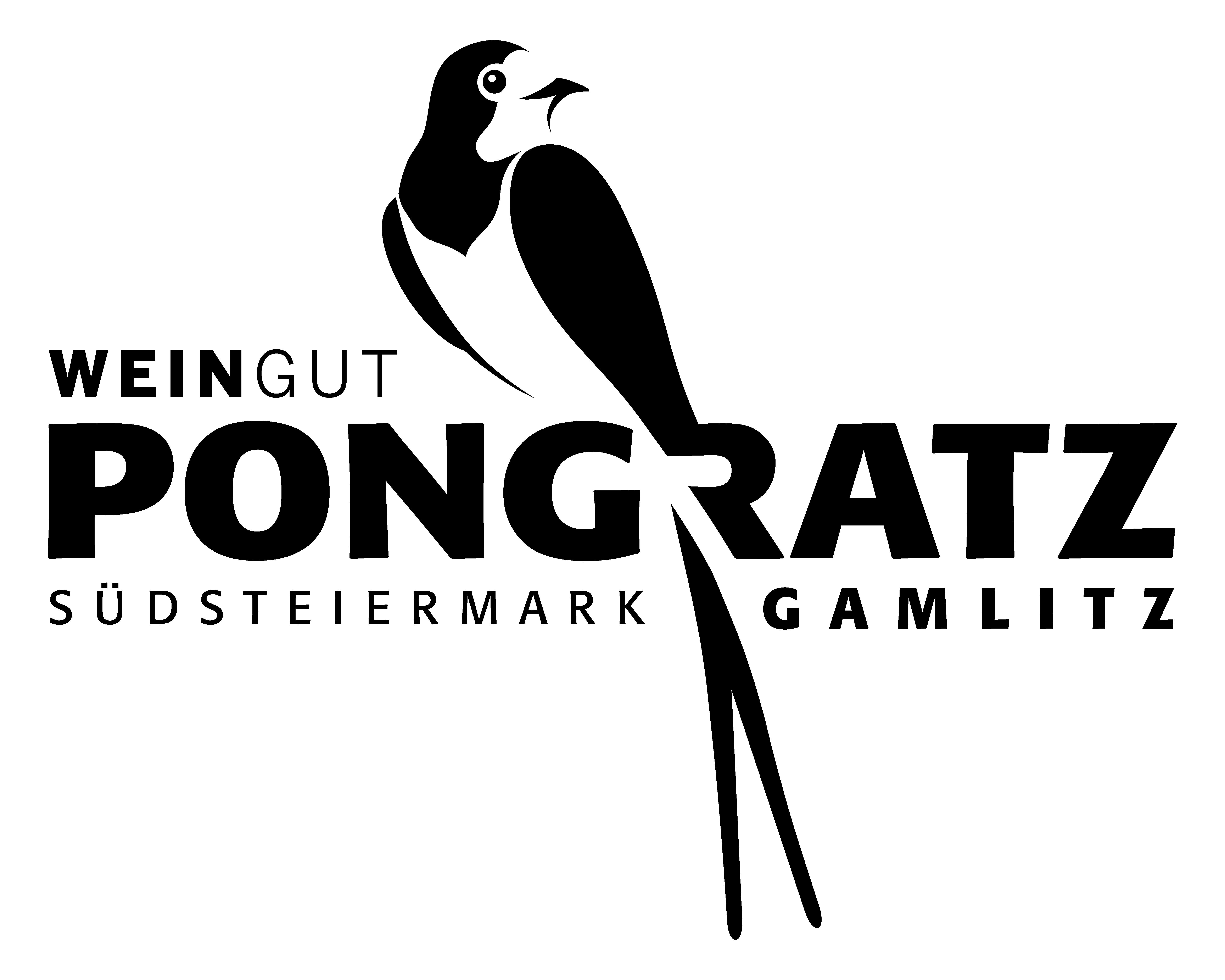 Logo_Pongratz_18