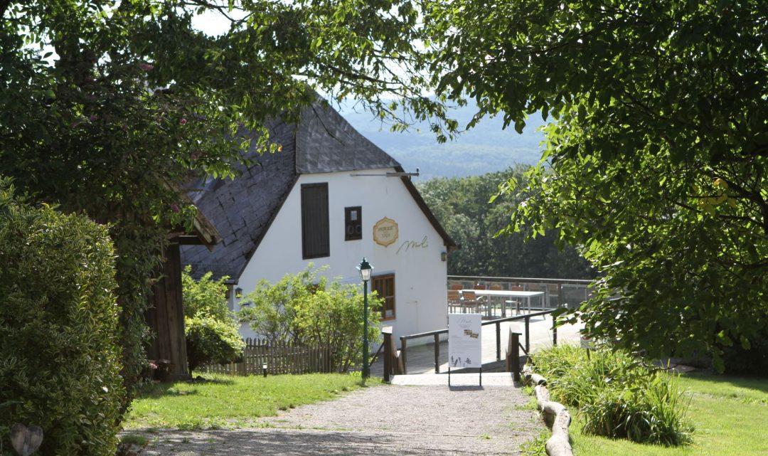 Mirli – Der schönste Platz im Wienerwald