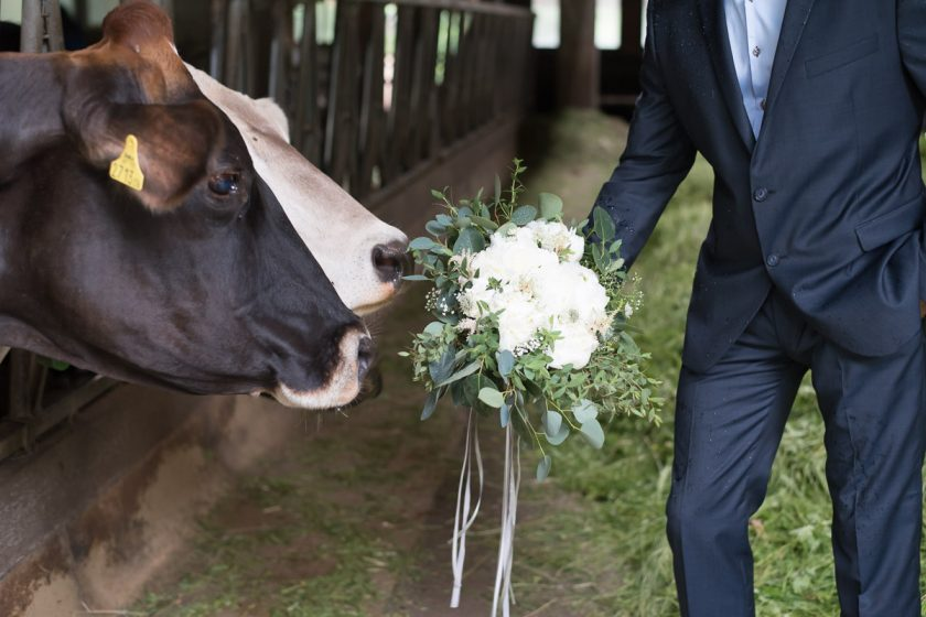 Hochzeit Verena&Alexander