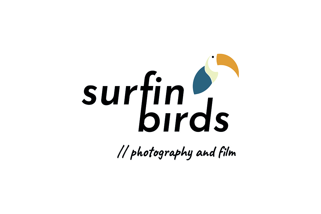 surfin-birds-logo-white