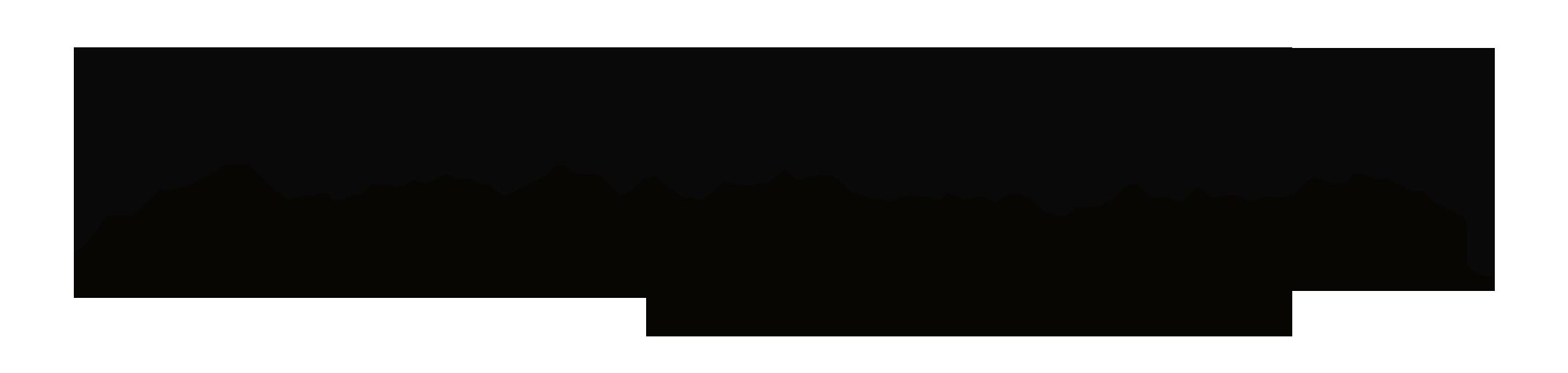 Logo_Hochzeitssalon-schrift-schwarz-ohne-Hintergrund