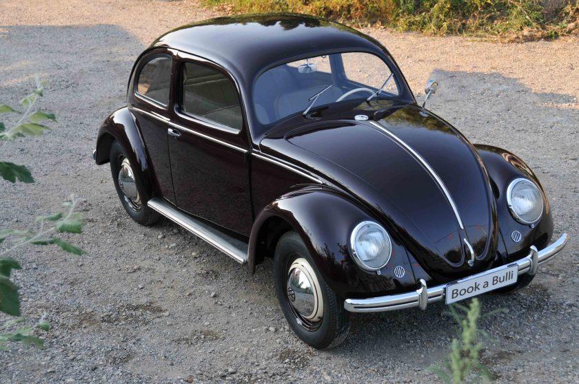 Käfer02 Kopie