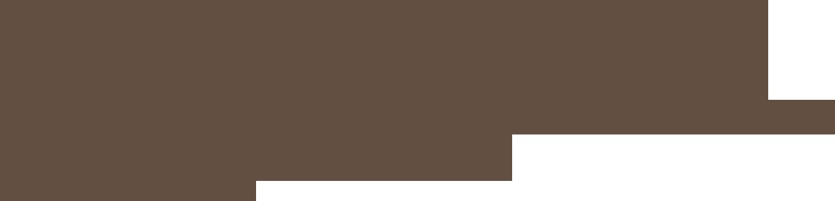 hochzeitsdj-logo-braun_1200