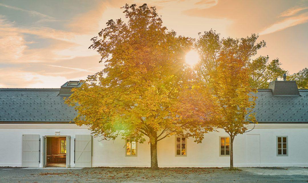 Kalandahaus gleich beim Weingut Esterhazy