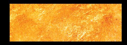 Reinhard Pacejka_logo_gold 2_Erweiterung 2