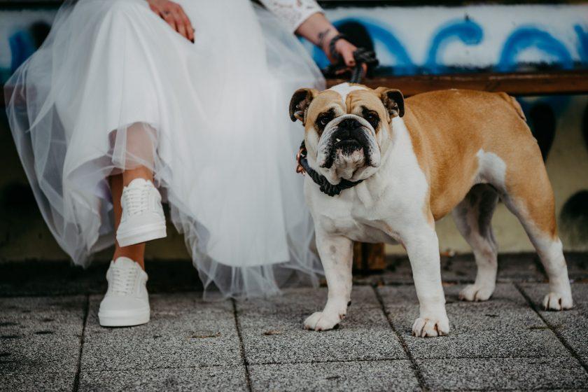 k-Hochzeitsfotograf_Kaernten (207)