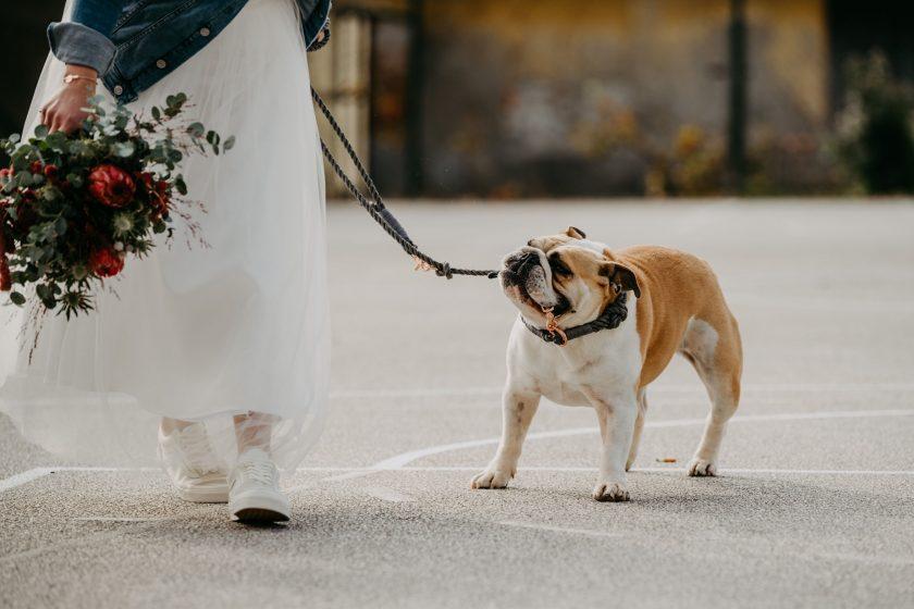 k-Hochzeitsfotograf_Kaernten (215)