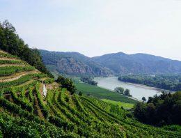 Hochzeitslocation am See in Niederösterreich