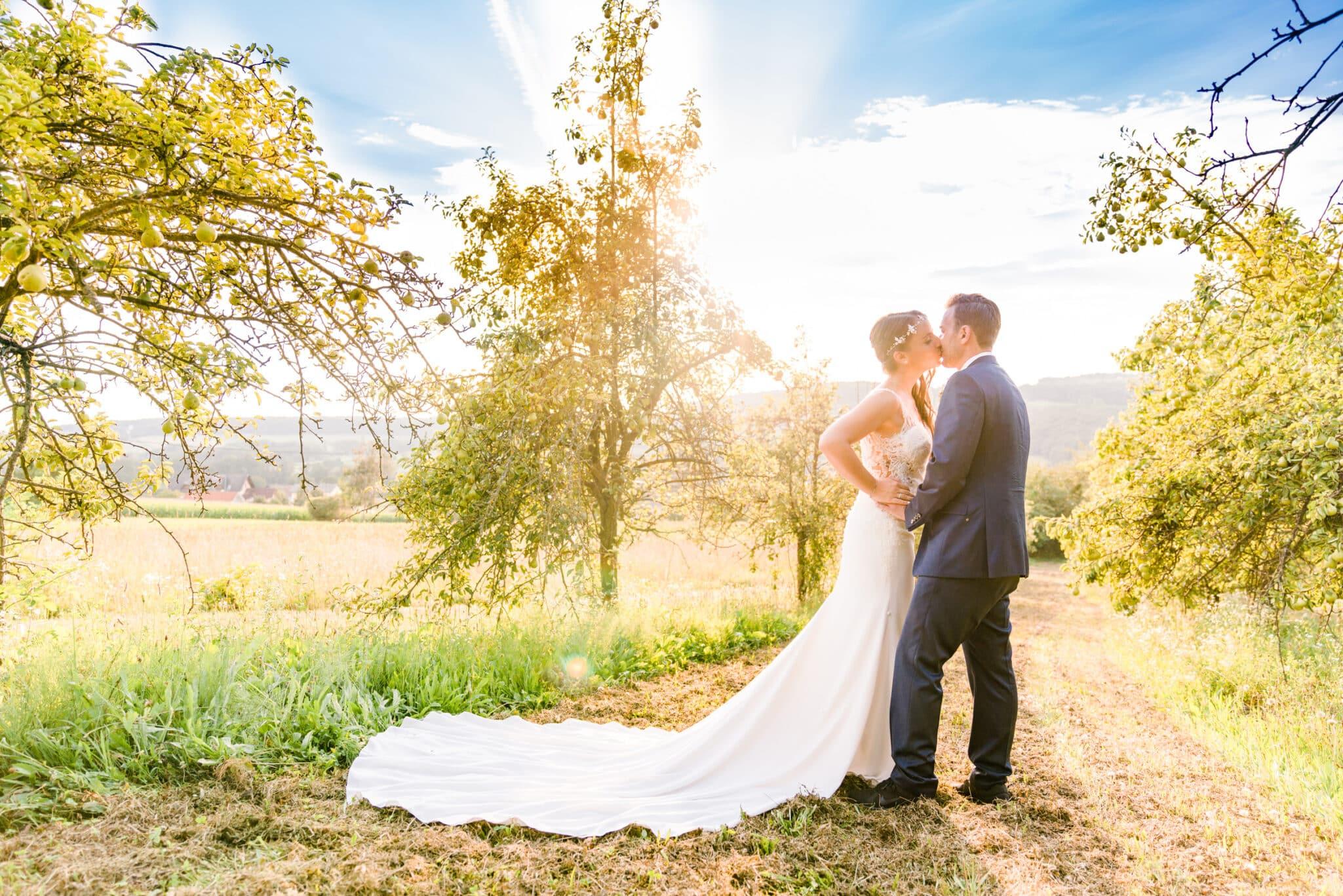 Golden Elephant Wedding Photography