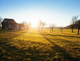 Hochzeit am Bauernhof in Kärnten