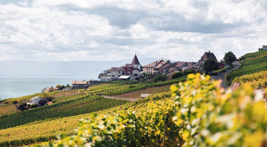 Hochzeit am Land in Niederösterreich