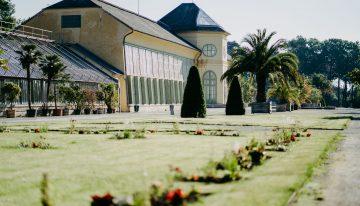 Orangerie Schlosspark Eisenstadt