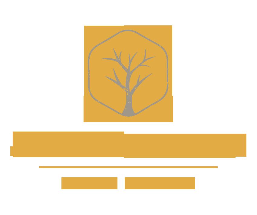 Christian Ciui - Logo Freigestellt