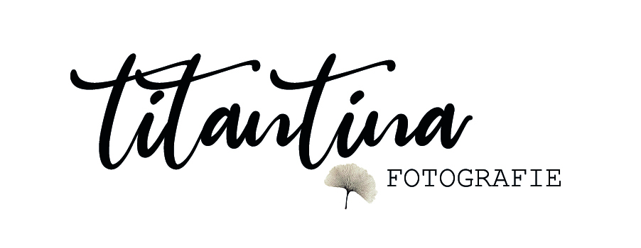 Logo neu titantina fotografie gingko