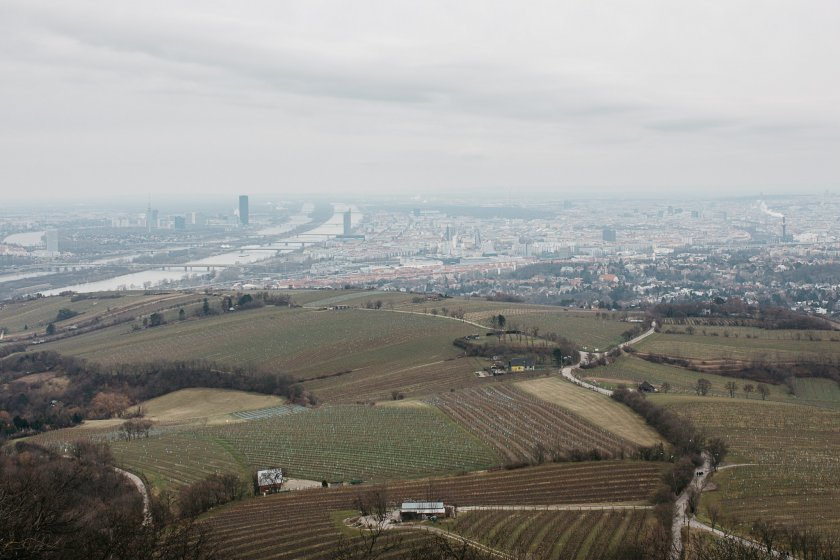 kahlenberg_hochzeitslocation_a_tale_of_hearts_20190412080221271788