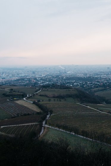 kahlenberg_hochzeitslocation_a_tale_of_hearts_20190412080528890978