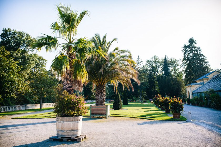 orangerie-schlosspark-eisenstadt_hochzeitslocation_wk_photography_00035