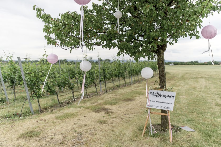 weingut-esterhazy_hochzeitslocation_weddingreport_00051