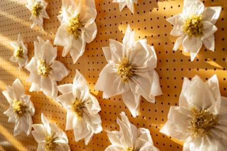 botanischer-garten-linz_hochzeitslocation_multimedia_film_&_photography_20200429100220776100