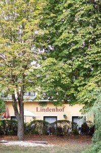 gasthof-lindenhof_hochzeitslocation_ben_&_mari_20190326145401022538