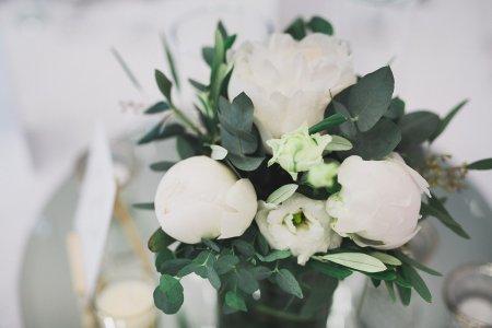 kursalon-mdling_hochzeitslocation_wedding_memories_20190607081452334719