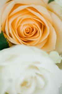 orangerie-der-grazer-burg_hochzeitslocation_miriam_&_manuel_photography_00005