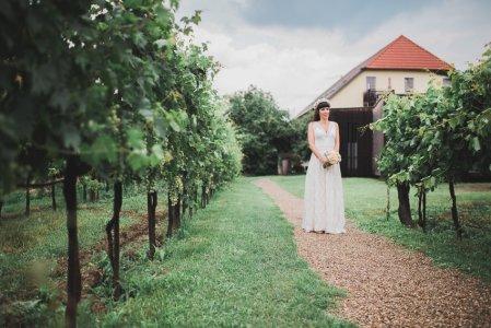 rmerhalle-mautern_hochzeitslocation_wedding_memories_20190829133607371634