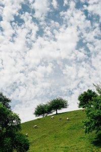 rthis-millrttevorarlberg_hochzeitslocation_daniel_willinger_photographie_00002