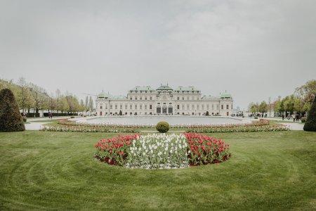 schloss-belvedere_hochzeitslocation_ivory_rose_photography_20190513090552093802