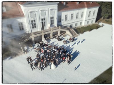 schloss-miller-aichholz-orangerie-europahaus-wien_hochzeitslocation_felix_büchele,_felixfoto_20190118124315493097