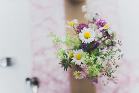 schloss-zeillern_hochzeitslocation_wedding_memories_20200810085431586813