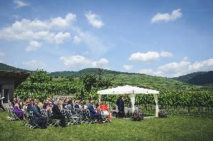 weingut-holzapfel_hochzeitslocation_he_shao_hui_wedding_photographer_00006