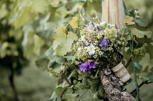 weingut-zimmermann_hochzeitslocation_weddingreport_00002