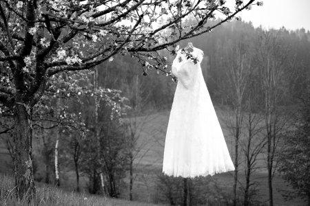 wildparkwirt_hochzeitslocation_eris-wedding_20190523101720241574